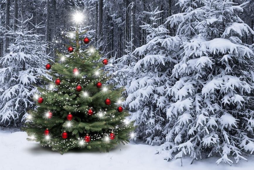Verzicht Kunden-Weihnachtsgeschenke zugunsten wohltätiger Organisationen